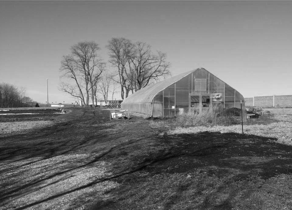 FHL Community:  New Partner – Indy Urban Acres
